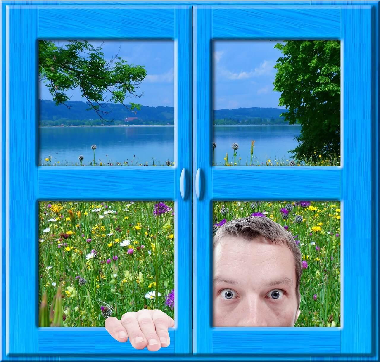 sąsiad_okno